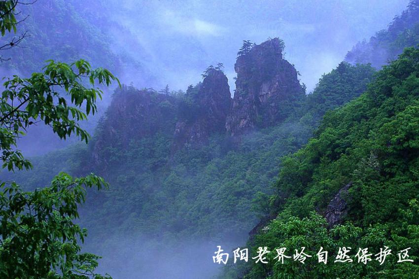 南阳西峡老界岭自然保护区