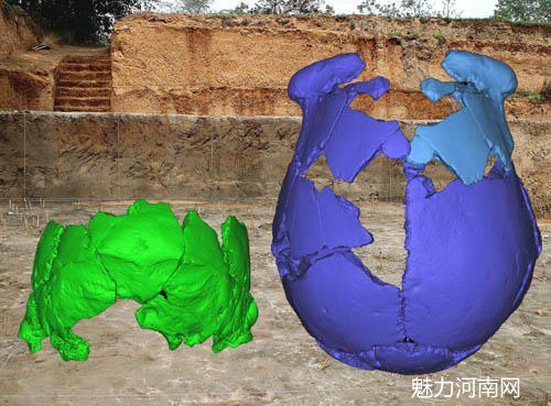 专家:许昌人可能是中国古老人类和欧洲人的后代